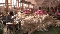 Chinas economic weakness hits factories