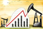 Crude Oil gains over 0.5%
