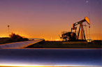 MCX Crude Oil trims losses
