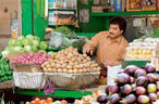 Food inflation continues to drive WPI inflation