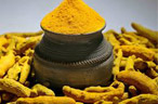 Spot Market Update: Turmeric trades around previous close