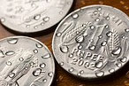 Indian Rupee: Near two year high